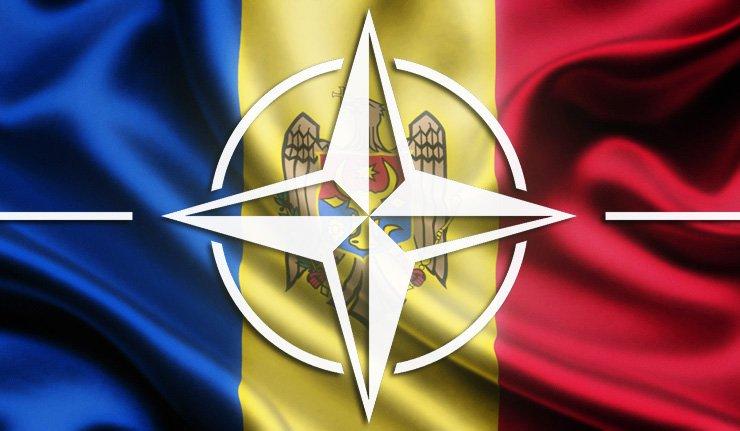 Формы сотрудничества Молдовы и НАТО на нынешнем этапе