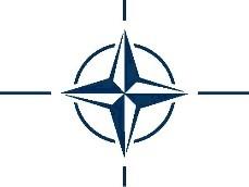 Discuții despre cooperarea dintre Marea Britanie și NATO cu atașatul militar britanic în Moldova