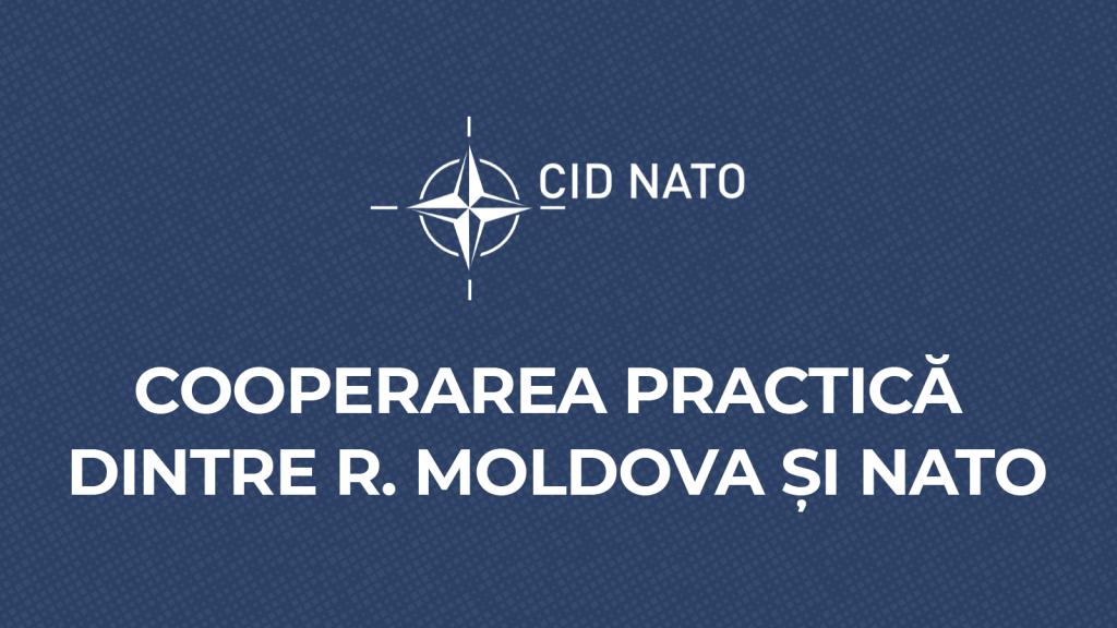 Infografic – Cooperarea dintre NATO și Republica Moldova, în practică
