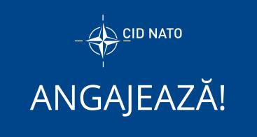 IDC on NATO (14)